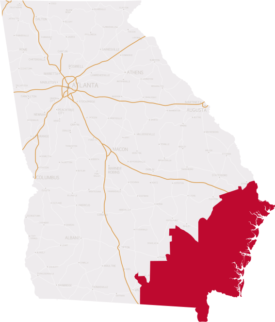Georgia's 1st District